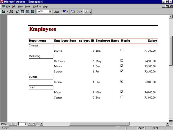 Access Database | Microsoft Access XP
