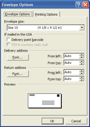 Word Envelopes: envelope options dialog box