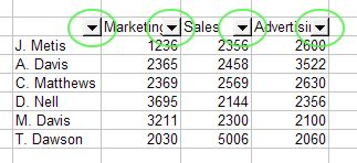 Excel Filter: AutoFilter example 1