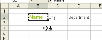 Microsoft Office Excel: Format Painter Example