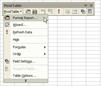 Excel Pivot Table toolbar - pivottable button