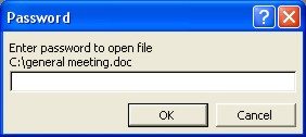 Microsoft Word Password: open dialog box