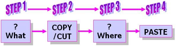 Word 2007 Tutorial: Copy & Cut example