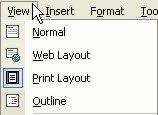 Microsoft Word Help: View menu
